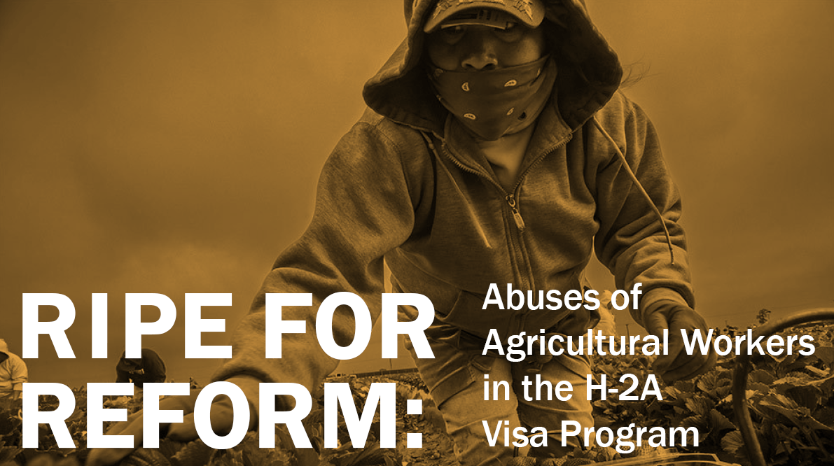 Ripe For Reform - Abuse of Agricultural Workers in the H-2A Visa Program